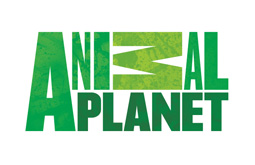 Logo TV Animal Planet